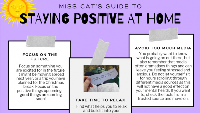 MS CAT'S GUIDE
