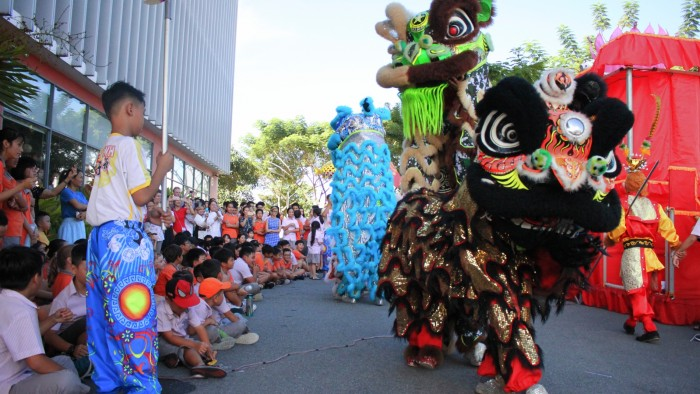 Professional performance of the Lion Dance (3)