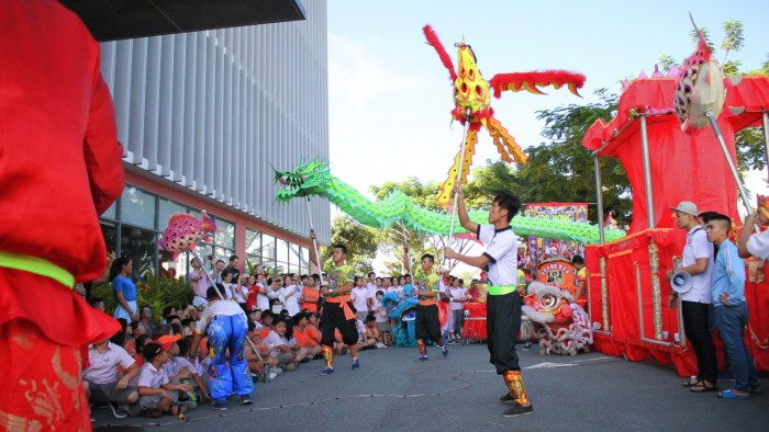 Professional performance of the Lion Dance (4)