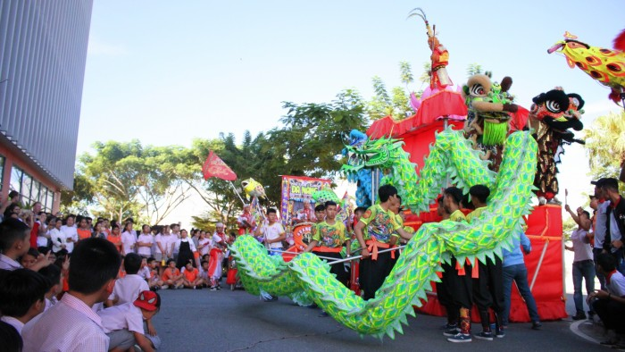 Professional performance of the Lion Dance (6)