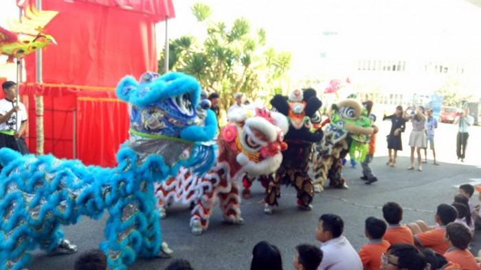 Professional performance of the Lion Dance (7)
